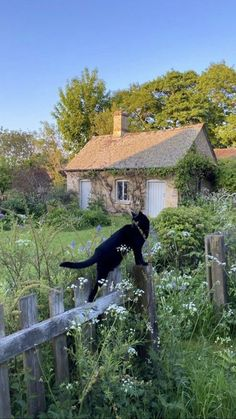 Cottage In The Woods, Cottage Style, French Cottage, Cute Cottage, Nature Aesthetic, Summer Aesthetic, Cat Aesthetic, Garden Cottage, Fairytale Cottage
