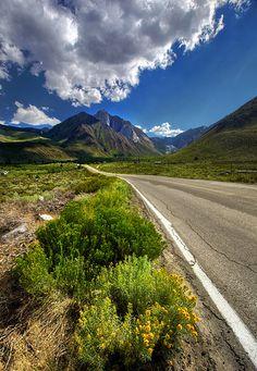 Road to Convict Lake, Eastern Sierras, California - USA
