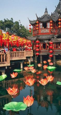 Yuyuan Garden Tea House Shanghai! We book Travel! By Land or by Sea!
