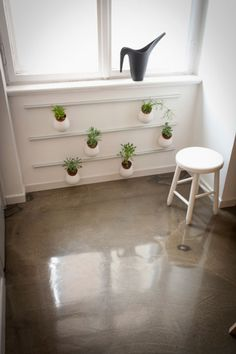polished conc floor