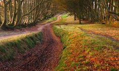 20 great UK walks with pubs, chosen by nature writers | Travel | The Guardian