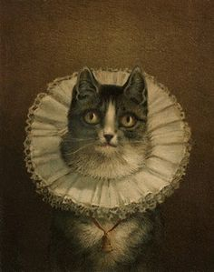 Vintage cat in a lace collar.