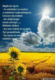 Mądrość życia...