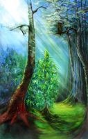Mountain High Pharms LLC - Fine Art Gallery