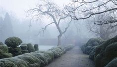 The Wirtz Private Garden  in Belgium.  photo by marco valdivia