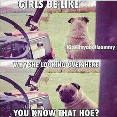 meme,lol-This is Hilarious but seriously ladies we have to stop this. Trust em' or drop em' 💪🏿 girls meme lol smh lmao bae podcast media en Haha Funny, Funny Cute, Funny Memes, Hilarious, Funny Stuff, Funny Shit, Funny Sayings, Pet Stuff, I Love To Laugh