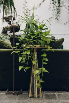 Plant-covered details inside Clapton Tram - a location hire space in London.