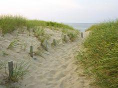 Weg zu Beginn des Meadow Beach, Cape Cod National Seashore, Massachusetts, USA Fotografie-Druck von Jerry & Marcy Monkman bei AllPosters.de