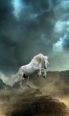 White horse of the cliffs. Stormy determination. Be strong, and brave. Show people what your made of.