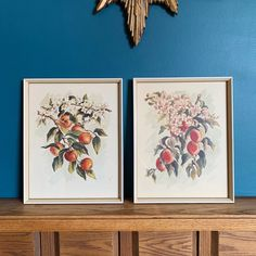 """Vintage pair framed watercolor fruit prints just listed in Etsy! 11.5x14.5"""" framed. 🍑 Watercolor Fruit, Fruit Print, Colored Paper, Vintage Frames, First Photo, Shades Of Green, Painting On Wood, Peach, Framed Prints"""