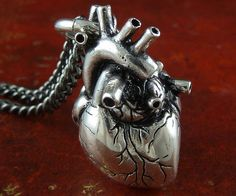 The anatomically correct heart necklace is an awesome twist on the most popular necklace ever, the heart shape. Now you can show your special someone that you love them by giving them your heart - literally - with this anatomically correct heart necklace.