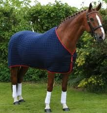 Horse Country Chic Equestrian Outfits Riding Clothes Rugs