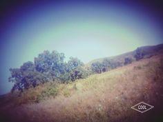 #nice#day