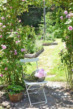 garden-June 2015