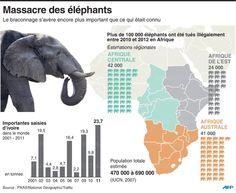Massacre des éléphants : le nombre s'est effondré de 60% entre2002 et2011.