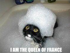 queen of france marie antoinette bath bubbles lol cat macro