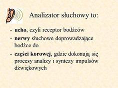 Analizator słuchowy to:>