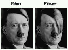 i'm gonna start using führawr