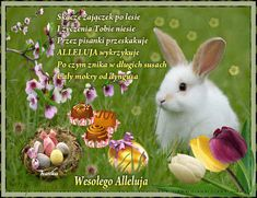 Obrazki gifowe: Wielkanoc Weekend Humor, Happy Easter Day, Birthday Quotes, Animals And Pets, Origami, Google, Adventure, Diy And Crafts, Paper