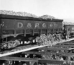 Holly Sugar Co - dumping beets at factory Delta, Colo :: History Colorado (c.1920-1930)