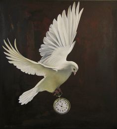"awesome art ""the gift of time"" by Jane Crisp New Zealand Art, Nz Art, Gift Of Time, Cool Art, Awesome Art, Watercolor Bird, Photo Reference, Shades Of Black, Bird Art"
