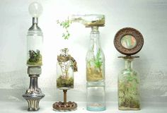 terrarium design | Terrific Terrariums to Brighten Up Your Living Space | Inhabitat ...