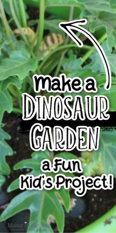 Learn how to make a DIY miniature dinosaur garden that your kids will love! This is a great fairy garden substitute for your children who love dinosaurs. If your kids love dinosaurs then make this fun dinosaur garden craft with them this spring! Fun Outdoor Activities, Preschool Learning Activities, Outdoor Learning, Fun Activities For Kids, Infant Activities, Fun Learning, Outdoor Play, Fun Projects For Kids, Diy For Kids