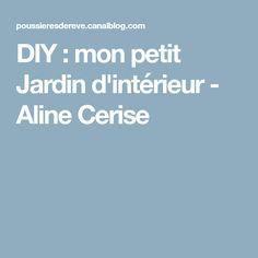 DIY : mon petit Jardin d'intérieur - Aline Cerise