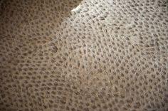 Image result for Peach pip floors