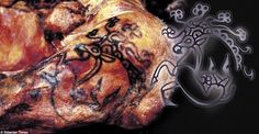 Needles and Sins Tattoo Blog | Pazyryk Mummy with 2,500 Year Old Tattoos to be Displayed