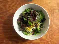 Spring lettuce salad, with French breakfast radishes and egg by Stash41NYC, via Flickr