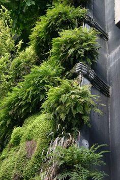 Vertical Garden Planters, Vertical Gardens, Lawn And Garden, Home And Garden, Green Tower, Green Facade, Garden Frame, Barrel Planter, Vertical Farming