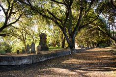 Local History, A 17, Cemetery, Paths, The Past, Sidewalk, Santa, Tours, Side Walkway