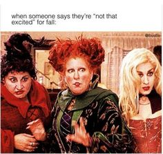 not excited for fall!!! omg never! Fall Funny, Funny Fall Quotes, Funny Monday Memes, Fall Memes, Funny Cute, The Funny, Hilarious, Spooky Memes, Funny Halloween Memes