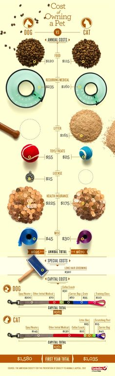 Dogs vs. Cats: Which One Cost You More? [Photo Infographic] | Tax Break: The TurboTax Blog