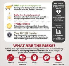 Do I Actually Must Fear About My High Cholesterol?