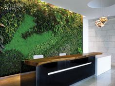 green wall and reclaimed wood transaction counter