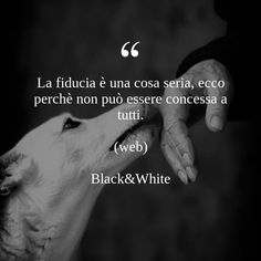 Motivational Quotes, Puppies, Black And White, Reading, Outfit, Dogs, Amor, Frases, Psicologia