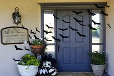 Halloween door.   Stiff felt cut into bat shapes duct taped on.  Also like the b pumpkins and the plants
