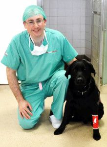 Lincoln, a 6 year-old black Labrador, owes his life to Labrador Retriever Rescue Scotland and the determination of rescue co-ordinator Carolyne Poulton who  reached out to animal lovers through  the charity's Facebook page.