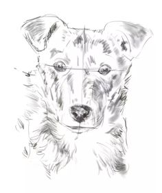Learn To Draw how to shade fur - shading the dog's fur - You don't need to be a trained artist to learn how to draw a dog. Discover how to sketch your dog's portrait in pencil with this simple lesson. Pencil Sketches Easy, Animal Sketches, Animal Drawings, Cool Drawings, Drawing Animals, Dog Sketches, Realistic Drawings, Pencil Drawings, Dog Drawing Tutorial