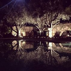 We call it research Pool Designs, Marrakech, Pools, Hunting, Interior Design, Plants, Instagram, Nest Design, Home Interior Design