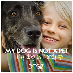 My dog is not a pet, my dog is family  #friends #firendship #dogs #dog #quote #dogquote #animals #pets #quotes #animalquotes #animallover #love #amor #tail #nose #animales #frases #frasesperros #perros #cachorros #pups #puppies #puppiequote #frasesanimales #lovequotes #frasesamor #paw #happy #happiness #happyquote #hapinessquote #feliz #felicidad #adopt #heart