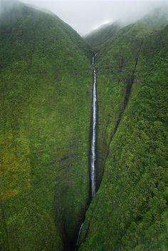 Where in the world?!  Kauai?