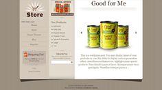 Store Ecommerce WordPress Theme templatic