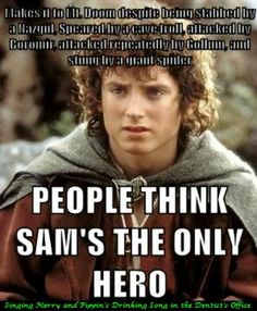 Yes. I love Sam, and he definitely is essential to the quest, but no more so than Frodo. Everyone is all: Sam never gets credit!-- but because of this, Sam gets all the credit. As amazing as Sam was, he could not have carried the Ring.