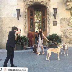 Ayer tuvimos un shooting con @larcabarcelona y @misscavallier Fue un placer tener su fiesta Gatsby aquí! Foto gracias @larcabarcelona #Barcelona #fashion #vintage #moda #photoshoot
