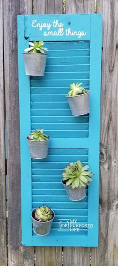 Shutter Vertical Garden Succulent Planter repurposed shutter holding galvanized pots with succulentsrepurposed shutter holding galvanized pots with succulents Small Shutters, Rustic Shutters, Diy Shutters, Repurposed Shutters, Bedroom Shutters, Louvered Shutters, Window Shutters, Vertical Garden Diy, Vertical Planter