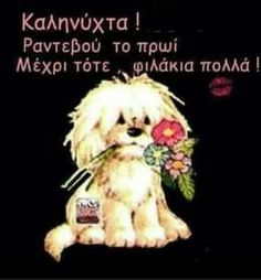 Good Night, Teddy Bear, Animals, Jewellery, Hats, Nighty Night, Animales, Jewels, Animaux