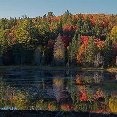Algonquin Park, Northern Ontario
